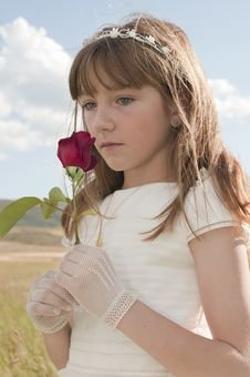 Free Girl With A Rose Stock Photo - 20509520