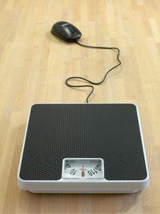 Free Weighing In Stock Photos - 20509693