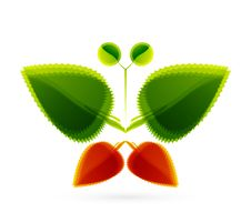Free Vector Abstract Leaf Butterfly. Nature Concept Stock Image - 20509751
