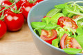 Free Fresh Salad Royalty Free Stock Images - 20510399