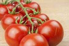 Free Tomatoes Stock Image - 20510341