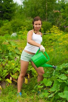 Free Woman Gardener Watering Stock Photography - 20510862
