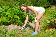 Free Young Woman With Hoe Stock Photo - 20510970