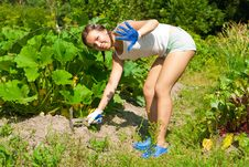 Young Woman With Hoe Stock Image