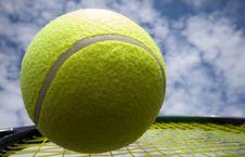 Free Big Tennis Stock Image - 20512221
