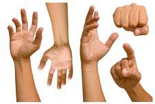 Free Hand Stock Photo - 20515490
