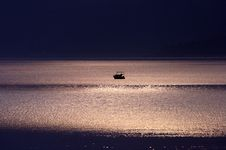 Free Moonlight On The Sea Stock Images - 20516314