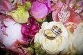 Free Wedding Rings Stock Photo - 20522960