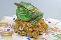 Free Luck Frog Royalty Free Stock Photo - 20524565