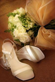 Free Lady Shoe Royalty Free Stock Photography - 20521457