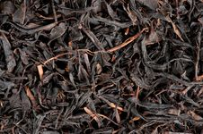 Free Dry Black Tea Leaves Royalty Free Stock Photo - 20521845
