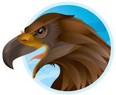 Free Eagle Royalty Free Stock Photos - 20522328