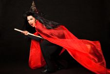 Free Flying Screaming Witch Broom Royalty Free Stock Photography - 20522657