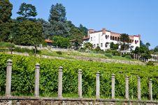 Italian Charming Villa In Vineyard Royalty Free Stock Images