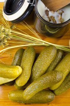 Free Polish Garlic Cucumbers Stock Images - 20525214