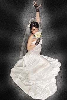 Free Bride On Dark Background Royalty Free Stock Photography - 20525327
