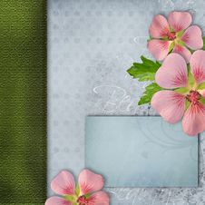 Free Cover For Album With Bouquet Of Pink Flowers Stock Image - 20526851