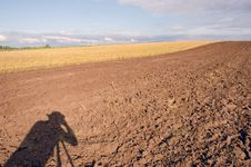 Free Photographers Shadow On  Tillage Royalty Free Stock Photos - 20528038