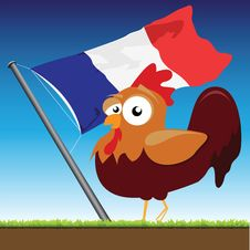 Free French Cock Stock Photo - 20529420