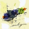 Free Aubergine Stock Photography - 20533082