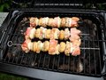 Free Grill Royalty Free Stock Photos - 20537028