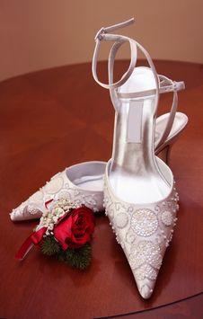 Free Lady Shoe Stock Photos - 20530533