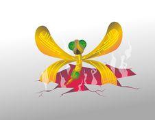 Mosquito Mechanic Stock Images