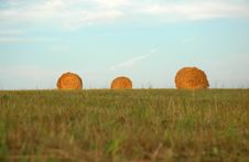 Free Three Haystacks Royalty Free Stock Photo - 20533405
