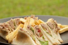 Free Tuna Sandwich Royalty Free Stock Photo - 20534515