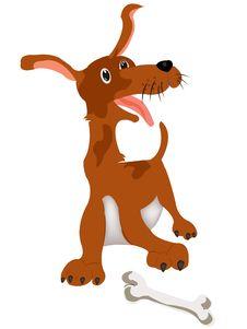 Free Merry Dog With Bone Stock Photo - 20536440