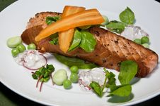 Free Salmon Salad Royalty Free Stock Photo - 20537045