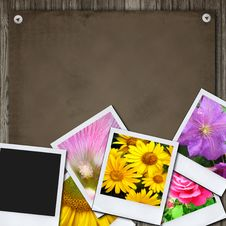 Free Photos On The Wood Desk Stock Images - 20537064