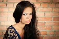 Free Brunet Girl On The Brickwall Background Royalty Free Stock Image - 20537306