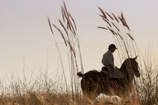 Free Rider With His Horse Into The Sunset Royalty Free Stock Image - 20537836