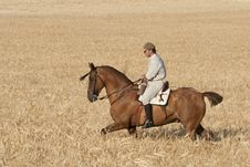Free Rider In The Field Of Barley Stock Photos - 20537963