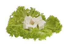 Free Lettuce And Feta Cheese Royalty Free Stock Photos - 20538188