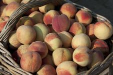 Free Biological Basket Of Peaches Royalty Free Stock Photos - 20538768