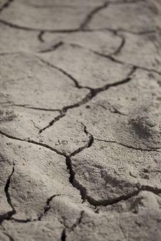Free Cracked Earth Royalty Free Stock Images - 20538899