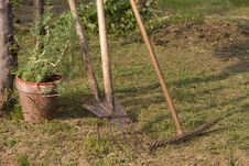 Free Rake And Hoe Work Tools Royalty Free Stock Photo - 20538915
