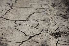 Free Cracked Earth Royalty Free Stock Photos - 20538928