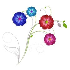 Free Flowers A Beauty Of Nature. Royalty Free Stock Photography - 20539027