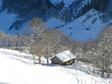 Free Skiing Slope Stock Photo - 20539680