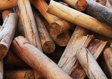 Free Firewoods Royalty Free Stock Image - 20539936