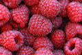 Free Raspberries Stock Photos - 20541253