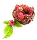 Free Raspberries Royalty Free Stock Photos - 20549838
