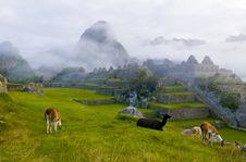 Free Machu Pichu Stock Photo - 20540880
