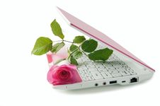 Pink Notebook With A Rose On The Keyboard Stock Photos