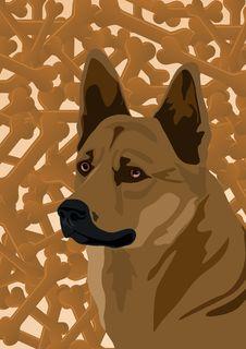 Free Dog And Bone Royalty Free Stock Photos - 20544238