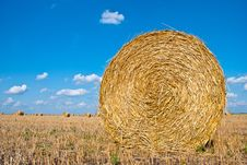 Free Straw Bales Royalty Free Stock Images - 20546609