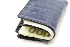 Free Wallet With Money Stock Image - 20547531